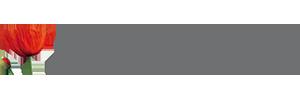 SABU Schuh & Marketing GmbH Logo